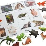 Montessori Pet Animal Match – Miniature Pet Animal Toy Figurines with Matching Cards – 2 Part Cards. Montessori learning toy, language materials Busy Bag Activity