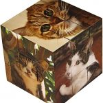 Cool Cats Jigsaw Puzzle Cube - 27 Piece Jigsaw - 3 in 1 Brain Teaser Puzzles