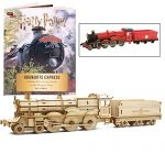 Harry Potter Hogwarts Express Book and 3D Wood Model Figure Kit - Build, Paint and Collect Your Own Wooden Movie Toy Train Model - Great for Kids and Adults, 12 + - 12""