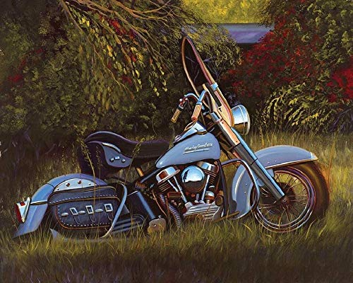 Classic Jigsaw Puzzle 1000 Pieces Adult Puzzle Wooden Puzzle DIY Motorcycle in The Grass Modern Home Decor Festival Gift Wall Art Picture Intellectual Game